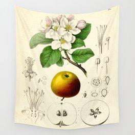 Antique Apple Study Wall Tapestry
