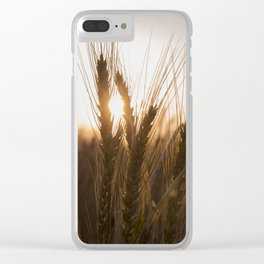 Wheat Holding the Sunset Clear iPhone Case