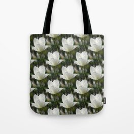 Morning Bliss of a centipede... Tote Bag