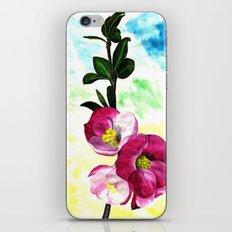 Blossom Spray iPhone & iPod Skin