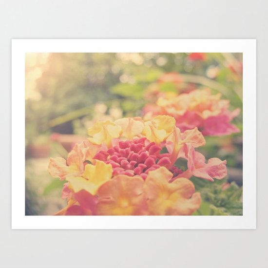 Daydreams of Summers Past Art Print