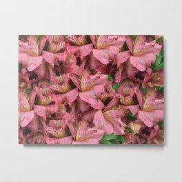 Cranberry Lilies Metal Print