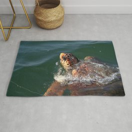 Loggerhead Turtle (Caretta Caretta) Breaking The Sea Surface Rug