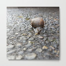 Ever Onward Snail Magic Metal Print