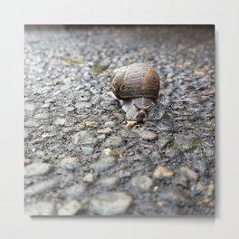 Ever Onward Snail Magic Metal Print