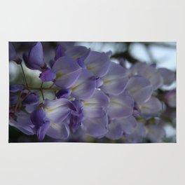 Purple and Violet Wisteria Blossom Rug