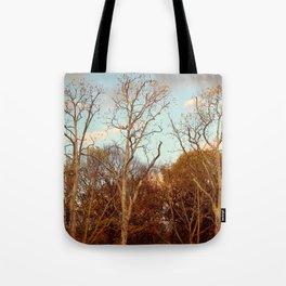 Treptow I Tote Bag