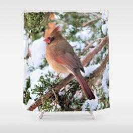 Cardinal Sitting Pretty Shower Curtain