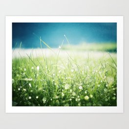 Dew Nature Photography, Green Blue Morning Dew Sparkle, Colorful Grass Photography Art Print