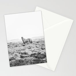 Horse Print with a Modern Style Stationery Cards
