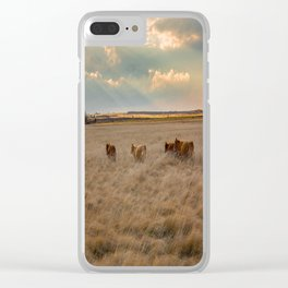 Cows Among the Grass - Cattle Wade Through a Field in Texas Clear iPhone Case