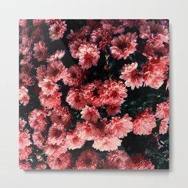 Flowers / Atchison, KS Metal Print