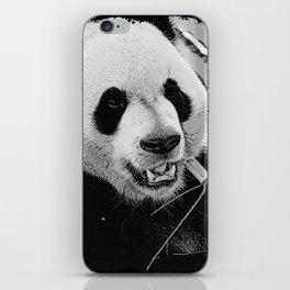 Panda Bear Munchies iPhone Skin