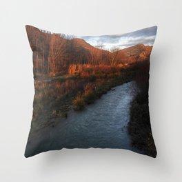 Gama de marrones Throw Pillow