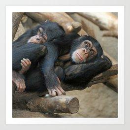 Chimpanzee_20141202_by_JAMFoto Art Print