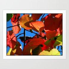 More Fall Leaves Art Print