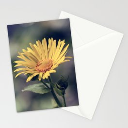 Great Leopard's Bane - Doronicum Orientale Flower Stationery Cards