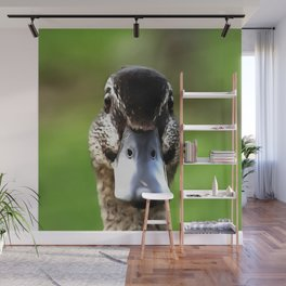 Hello Ducky Quirky Duck Portrait Wall Mural