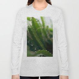 Pitahaya Long Sleeve T-shirt