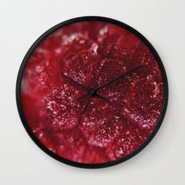 Raspberry Under The Scope Wall Clock