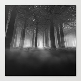 Soul of the Forest B&W Canvas Print