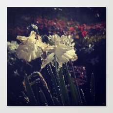 Water Droplets in Motion (Flowers) Canvas Print