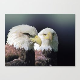 Bald Eagle Bird Wildlife Wall Art Lodge Art, Cabin Print A468 Canvas Print