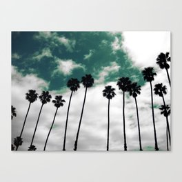 Palms in the sky Canvas Print