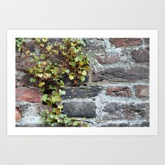 Green wall Art Print