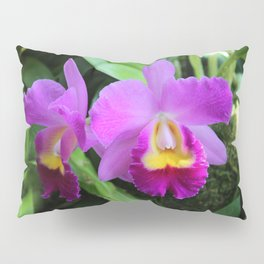 Orchid Witch Pillow Sham
