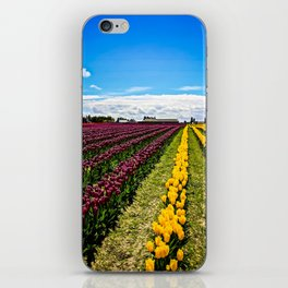 Tulips in La Conner, Washington iPhone Skin