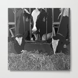 Black & White Cattle Feeding Pencil Drawing Photo Metal Print