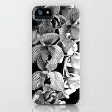 Orchid Noir iPhone (5, 5s) Slim Case