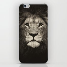 Mr. Lion King iPhone Skin