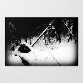 Forest Dark VI Canvas Print