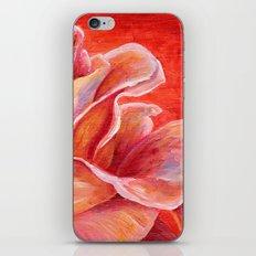 Rose Flower Bud iPhone & iPod Skin