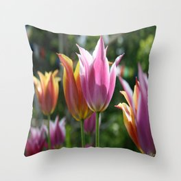 Field of Tulips by Mandy Ramsey, Haines, Alaska Throw Pillow