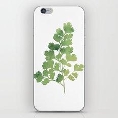 Plant 2 iPhone & iPod Skin