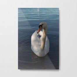 White Swan Beauty Metal Print