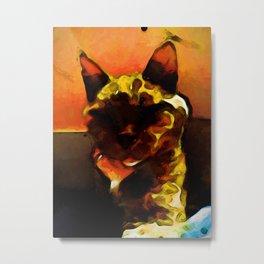 Lava Cat and an Orange Wall Metal Print
