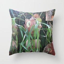 Guida's Staghorn Ferns Throw Pillow
