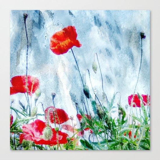 Poppy Love III Canvas Print