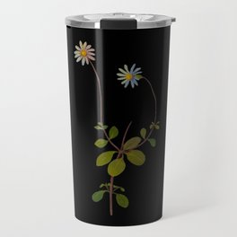 Cineraria Amelloides Mary Delany Delicate Paper Flower Collage Black Background Floral Botanical Travel Mug