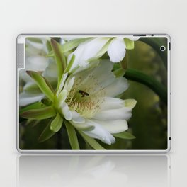 Cereus Morning  Laptop & iPad Skin