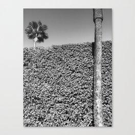 landscape architecture no.3 Canvas Print