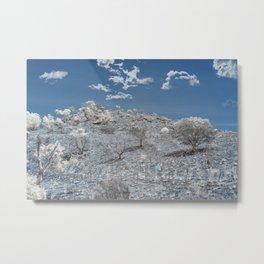 Backwoods Wilderness Metal Print