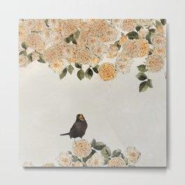 blackbirds song Metal Print