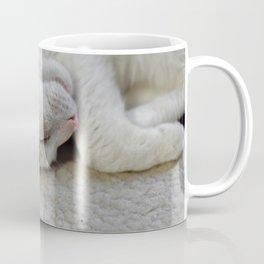 Cute Kitty Snoozes Softly Coffee Mug
