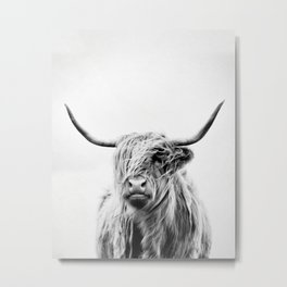 portrait of a highland cow - (vertical) Metal Print