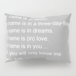 Time Story:  Storyboard IV (riddle) Pillow Sham